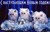 Открытка с наступающим Новым годом, животные, котята и елочные игрушки