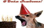 Открытка с Днем Рождения прикольная, животные, собака и торт