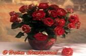 Открытка с Днем Рождения, цветы, красные розы в горшке