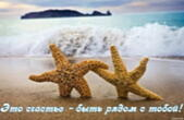 Открытка это счастье быть рядом с тобой, морские звезды