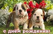 Открытка с Днем Рождения, животные, щенки и цветы