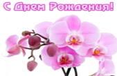 Открытка с Днем Рождения, орхидея