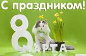 Открытка с праздником, тюльпаны, кот