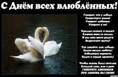 Открытка с Днем влюбленных с стихотворением, лебеди, Говорят, что у лебедя существует закон! Умирает любимая - Умирает и он! Крылья сложит и падает Камнем вниз со скалы, И над ним цвета радуги Вырастают цветы! Так давайте, как лебеди, Будем милых любить!