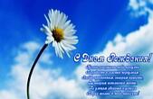 Открытка с Днем Рождения с стихотворением, цветок, ромашка и небо