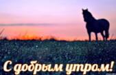 Открытка с добрым утром, животные, лошадь и рассвет