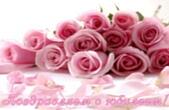 Открытка Поздравляем с юбилеем, цветы, розовые розы