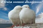 Открытка с Днем Святого Валентина, голуби