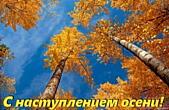 Открытка с наступлением осени, березы