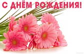 Открытка с Днем Рождения женщине, цветы, герберы