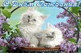 Открытка с Днем Рождения, цветы, котята и сирень