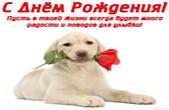 Открытка с Днем Рождения, щенок и роза