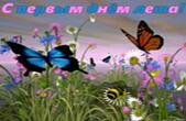 Открытка с первым днем лета, бабочки и цветы