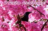 Открытка с Днем Рождения, животные, птица и розовые цветы