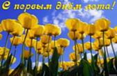 Открытка с первым днём лета, цветы, тюльпаны