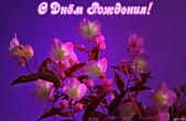 Открытка с Днем Рождения, цветы