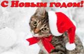 Открытка с Новым годом, кот