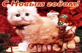 Открытка с Новым годом, животные, котенок