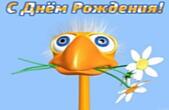 Открытка с Днем Рождения прикольная, животные, утка и цветы
