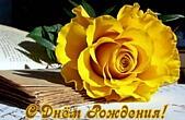 Открытка с Днем Рождения, цветы, желтая роза