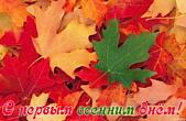 Открытка с первым осенним днем, листья