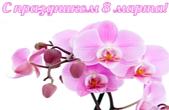 Открытка к празднику 8 марта, орхидея