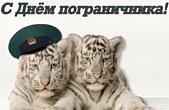 Открытка с днем пограничника, тигры и фуражка