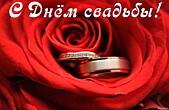 Открытка с Днем свадьбы, роза и обручальные кольца