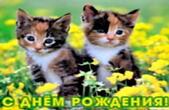 Открытка с Днем Рождения, животные, цветы и котята