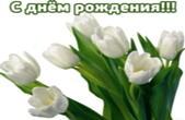 Открытка с Днем Рождения женщине, цветы, белые тюльпаны
