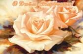 Открытка с Днем Рождения, цветы, розы
