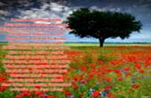 Открытка с наступлением лета с стихотворением-пожеланием