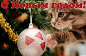 Открытка с Новым годом, животные, котенок и новогодняя елочная игрушка