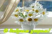 Открытка с добрым утром, цветы, ромашки